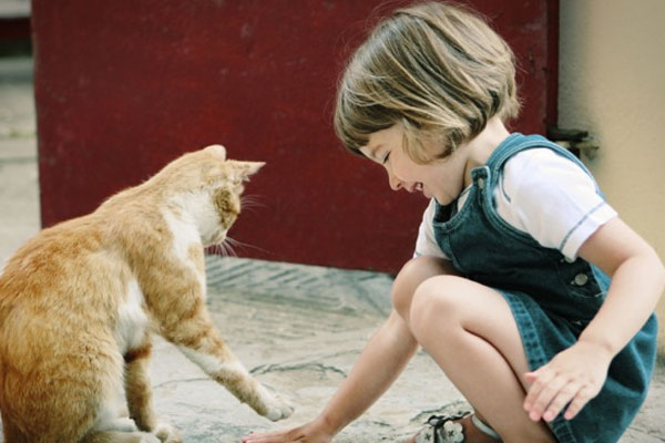 Kid playing with cat