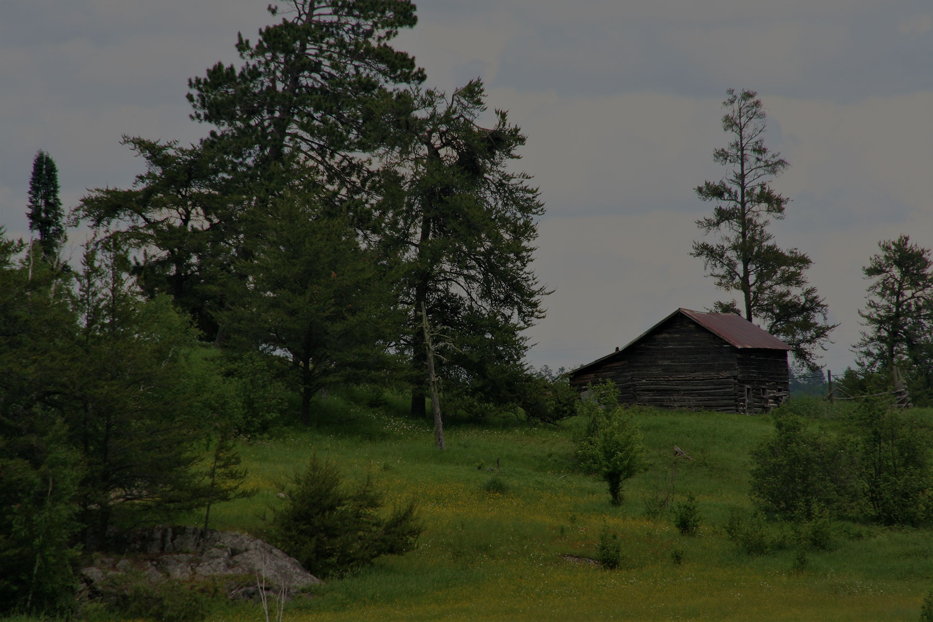 Log Cabin in the fields